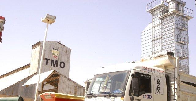 Taşımacılarımızın dikkatine: TMO, 44 bin ton mısır alacak