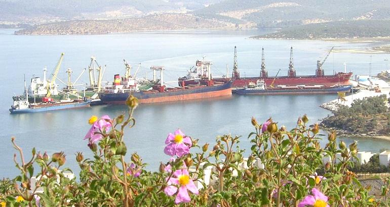 Güllük Liman Sahası özelleştiriliyor