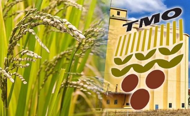 TMO 60 bin ton arpa ithal edecek