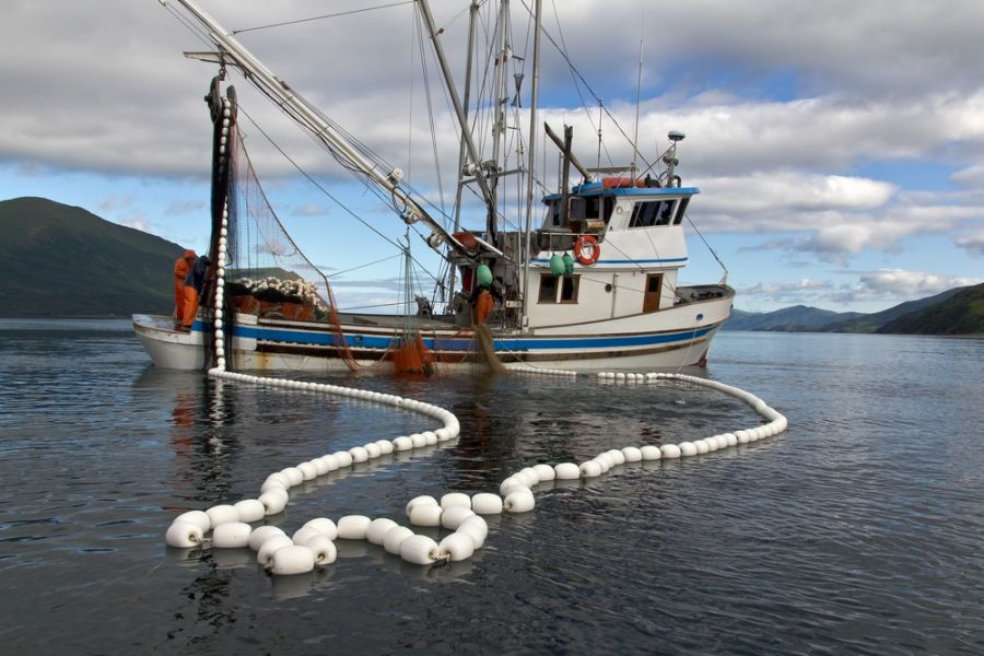 Türk balıkçılarına Somali şansı geldi