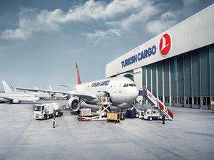 Turkish Kargo 3. havalimanını gözüne kestirdi