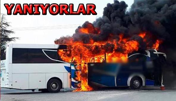 18 günde 11 otobüs 10 numara yağ kurbanı