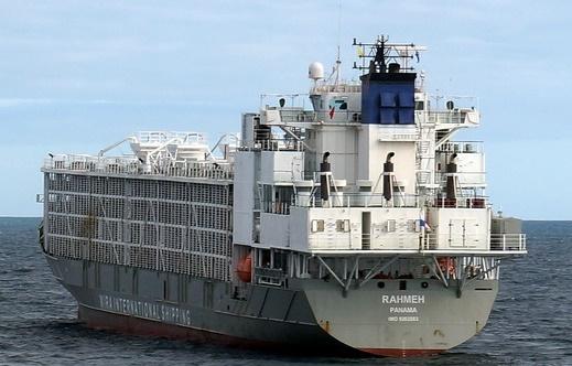 Mersin'de demirleyen şarbonlu gemi Meclis gündeminde