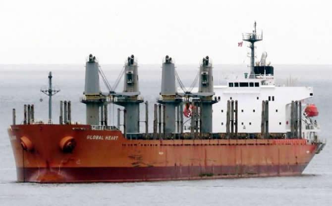 Japon kuruyük gemisi, Türk şirketine satıldı