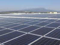 Reysaş, yeşil lojistik devrimini çatılardan başlattı