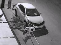 Sokak köpekleri otomobili böyle parçaladı!