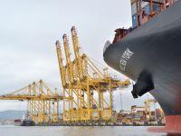 """Asyaport, """"En büyük"""" konteyner gemisini ağırladı"""