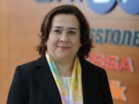 Brisa, Türkiye'nin 'İklim Liderleri' arasında