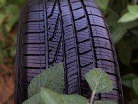 Goodyear üretimde soya yağı bazlı kauçuk kullanıyor