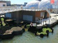 Hollanda, denizdeki çöpten geri dönüşüm parkı yaptı
