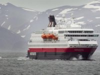 Norveç'te gemi yakıtı için ölü balıklardan faydalanılacak