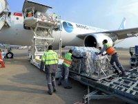 BTSO Lojistik ile Fransa'ya 1 ton baklava gönderdi