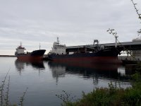 Hopaport ilk 6 ayda 103 gemi ağırladı, 475 bin ton yük elleçledi